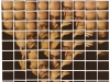 new-york-chuck-close