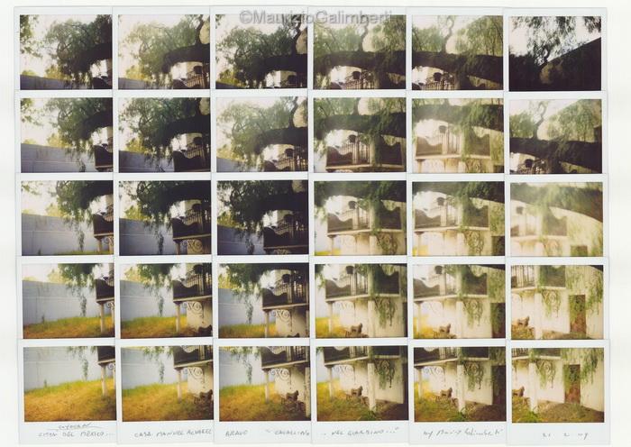 32_Casa-di-M.A.Bravo_cavallino-nel-giardino_21-02-2009