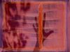 nice04-29
